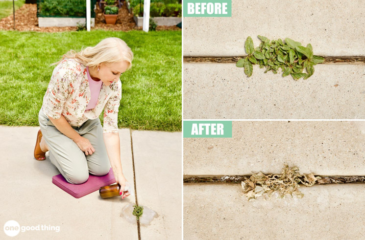 This Natural Homemade Weed Killer Is The Cheapest & Easiest Way To Kill Weeds Fast